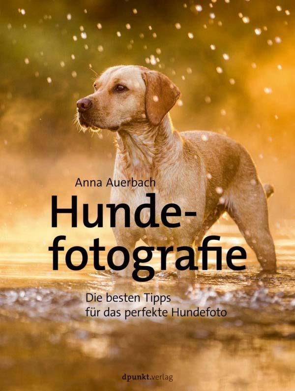Auerbach: Hundefotografie